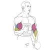 упражнение для рук
