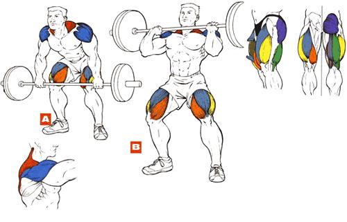 Рывок штанги на грудь упражнения для