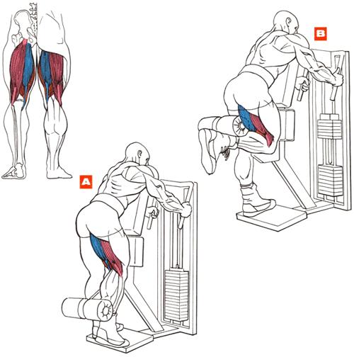 как убрать жир с задней части ноги