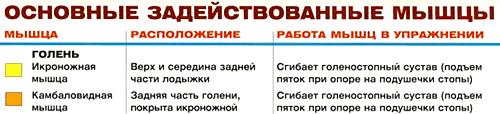 бодибилдинг