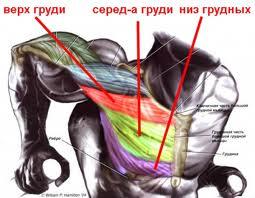 Разрыв большой грудной мышцы