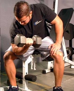 Немного нового о пользе упражнений с гантелями
