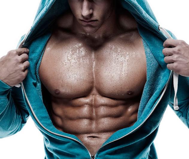 Скачать анатомия бодибилдинга