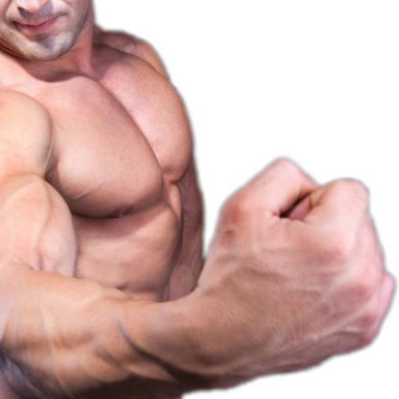 Как при помощи добавок повысить уровень тестостерона