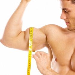 Правильная тренировка мышц рук