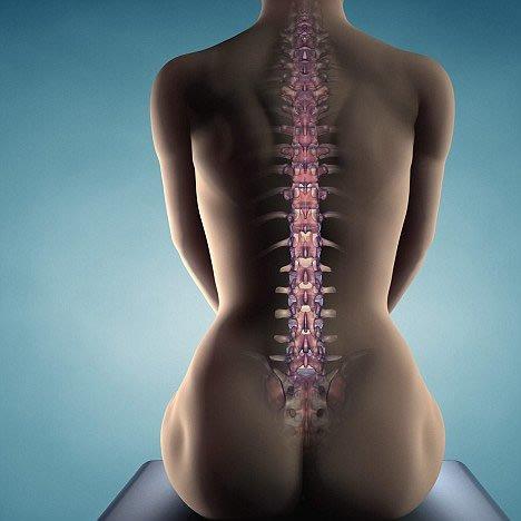 травма спину бодибилдинг
