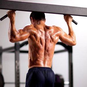 Как эффективно тренировать спину
